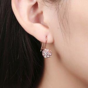 Silver-Tone Crystal Ball Zircon Stud Earrings